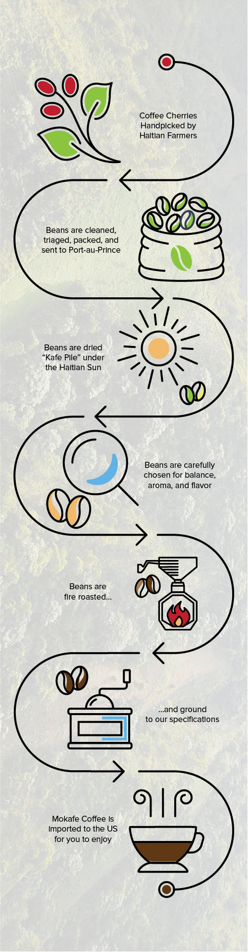 Coffees mokafe coffee our process infographic our process infographic pooptronica Images