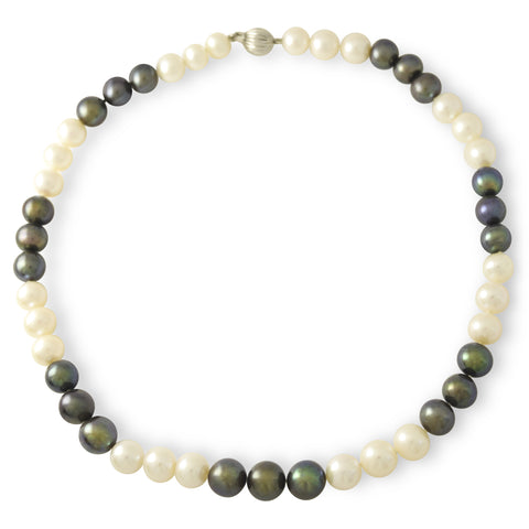 Tahitian Pearl Necklace Two Toned Color
