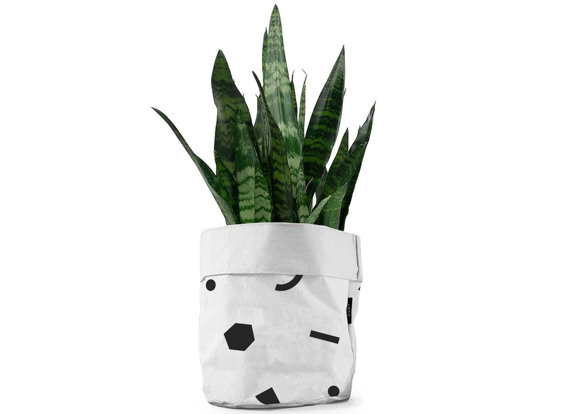 MOXON Shapes Canvas Bin with plant inside
