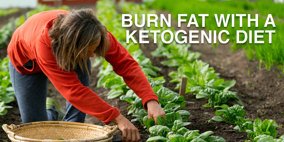 Blow Torch Your Fat with Ketogenic Diet!