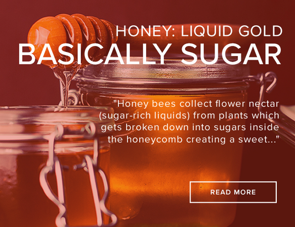 "A clear canning jar is open and filled with honey. Across the open jar is a honey dipper dripping honey. The image reads: ""Honey: Liquid Gold Basically Sugar."""