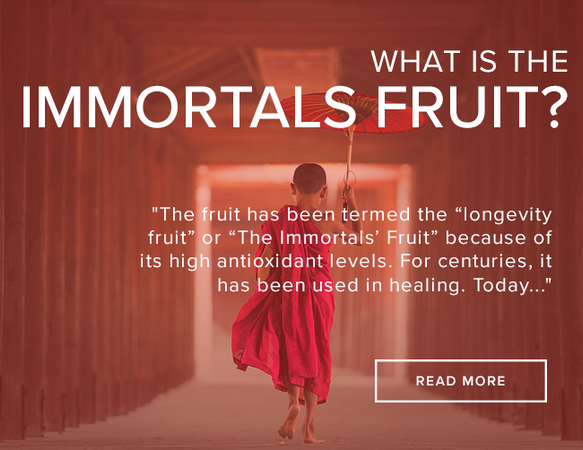 Why monk fruit was nicknamed the immortal's fruit.
