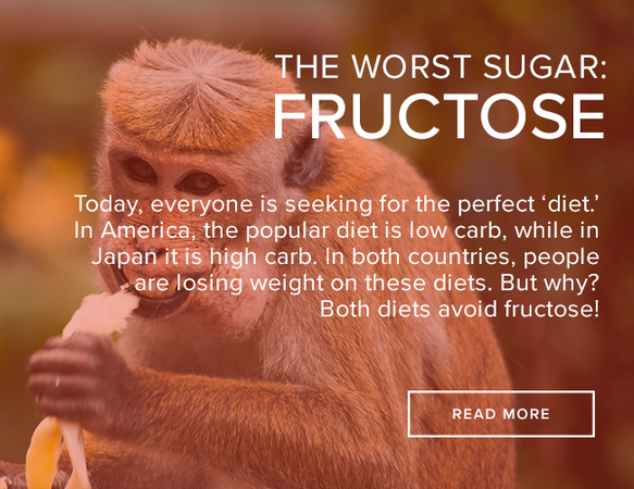 "A light brown monkey is eating a banana. The image reads: ""The Worst Sugar Fructose."""