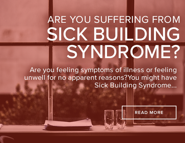 Are You Suffering from Sick Building Syndrome?