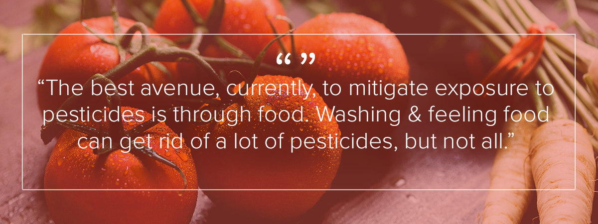 """The best avenue, currently, to mitigate exposure to pesticides is through food."""
