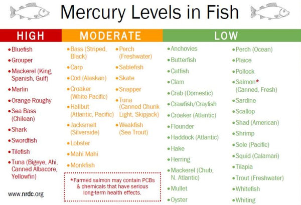 fish or no fish the facts about mercury levels in fish