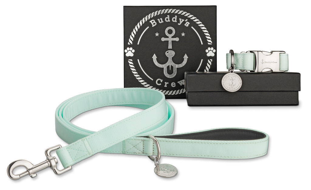 Icy Blue | Set (Halsband + Leine)