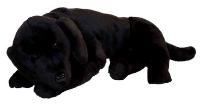 Ditz Black Lab
