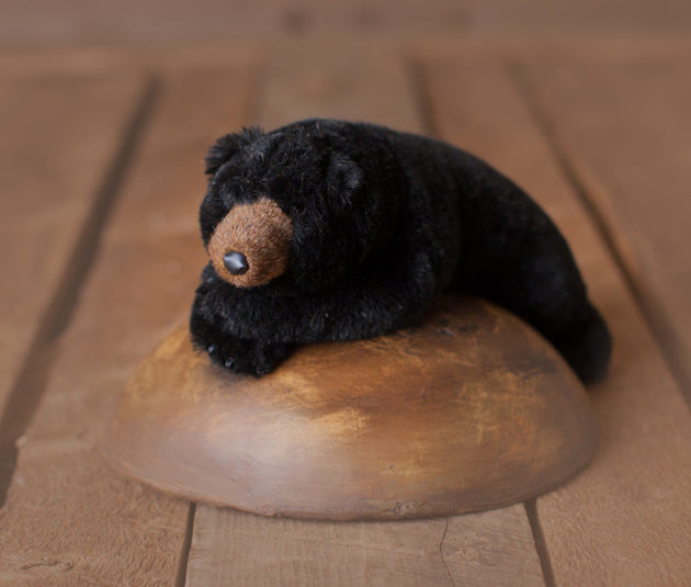 Small Ditz Black Bear
