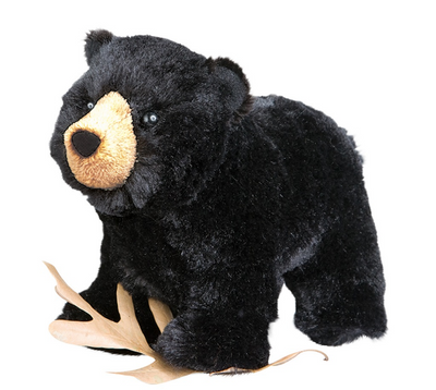 Morley The Black Bear