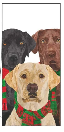 Merry Labradors (Guest Towel)