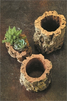 Raw Cork Pot