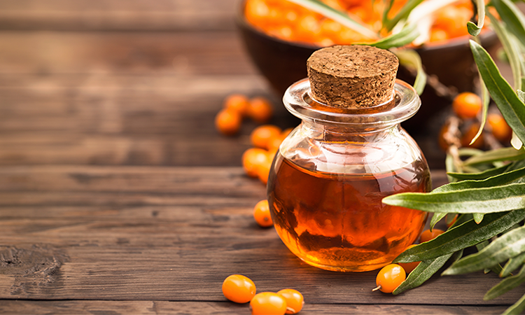 Sea buckthorn Oil No No's