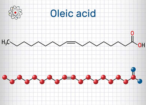 Oleic Acid  Oleic acid is also called omega 9, it is a monounsaturated fatty acid, and it's actually the most common fatty acid found on earth. Like omega 6, it can be found in many of the components that make up skin, like in wax or cholesterol esters.  On its own, oleic acid has a penetrating effect, meaning that it can break through different cellular layers in the body. Studies of isolated oleic acid imply that the fatty acid on its own could be disruptive or irritating for skin.  However, omega 9 is almost never isolated when it comes to natural oils and skincare. It's commonly found in plant-based oils, and is usually paired with other fatty acids, like linoleic acid.  Natural oils that have high levels of oleic acid also have higher numbers on the comedogenic scale. Some oils that are especially high are coconut oil or olive oil. While these ingredients sound like a recipe for irritation, some plant oils have a healthy balance of oleic acid.  Sea buckthorn oil, especially the seed oil, has a nearly perfect ratio of oleic acid, linoleic acid, and even omega 3. The oleic acid in sea buckthorn seed oil is beneficial because it helps to deeply penetrate to help nurture skin cells.  In balanced oils like sea buckthorn seed oil, omega 9 can have hydrating and soothing properties for skin.