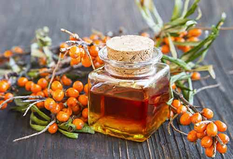 Sea Buckthorn is the Ultimate Omega Source