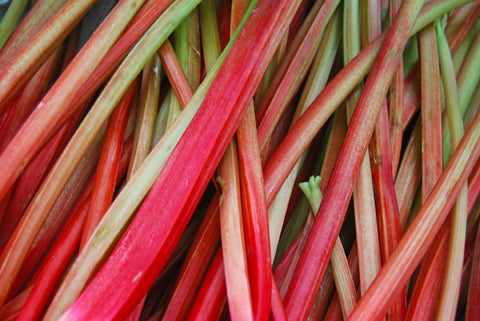 Rhubarb one of many seasonal foods by seabuckwonders