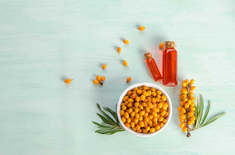 Can sea buckthorn oil activate human stem cell activity?