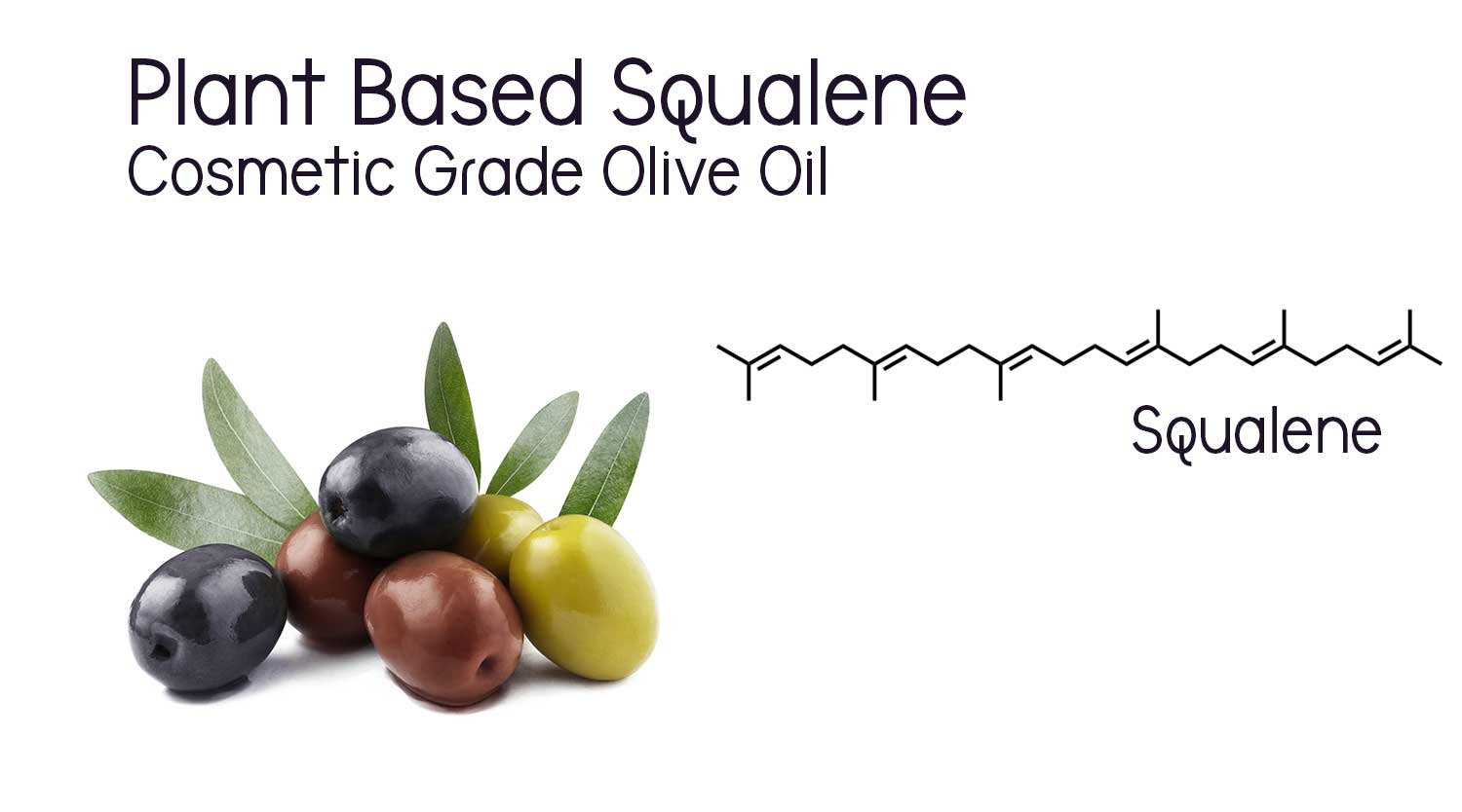 Squalane is sought after for its skin moisturizing, calming, and nourishing properties. It can be taken from animal sources, but we prefer to use cosmetic grade olive oil as the source.  We strive for earth friendly products, so plant based is always our first choice. But, did you know that olives can contain 300 times the amount of squalane than other natural sources, including animal sources?