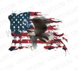 *Eagle and Flag - HTV Transfer