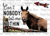*Horse - Can't Nobody Tell Me Nothin - HTV Transfer
