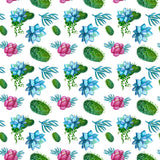 *Succulent Patterns