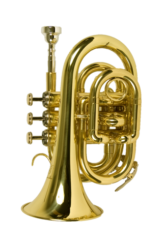 B - U.S.A. WTR-PK-LQ POCKET TRUMPET LACQUER - GOLD COLOR