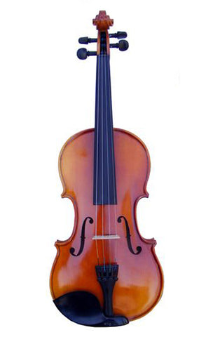 Full Size 4/4 Apprentice VIAP44 Violin Ensemble