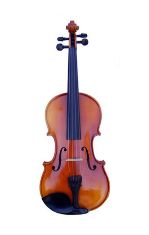 Fever 4/4 Apprentice VIAP34 Violin Ensemble
