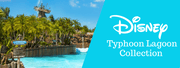 Disney Typhoon Lagoon/Blizzard Beach