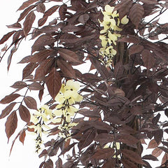 Deep Red Far East Wisteria Tree, Luxury Artificial Trees