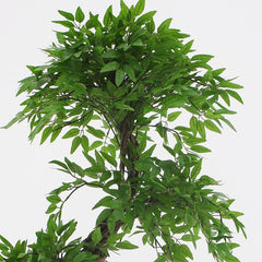 Contemporary Artificial Fruticosa Tree, 6ft Silk Trees