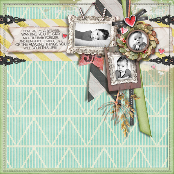 Country Chic Paper Pack