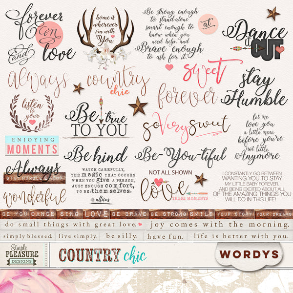 COUNTRY CHIC: Word Art