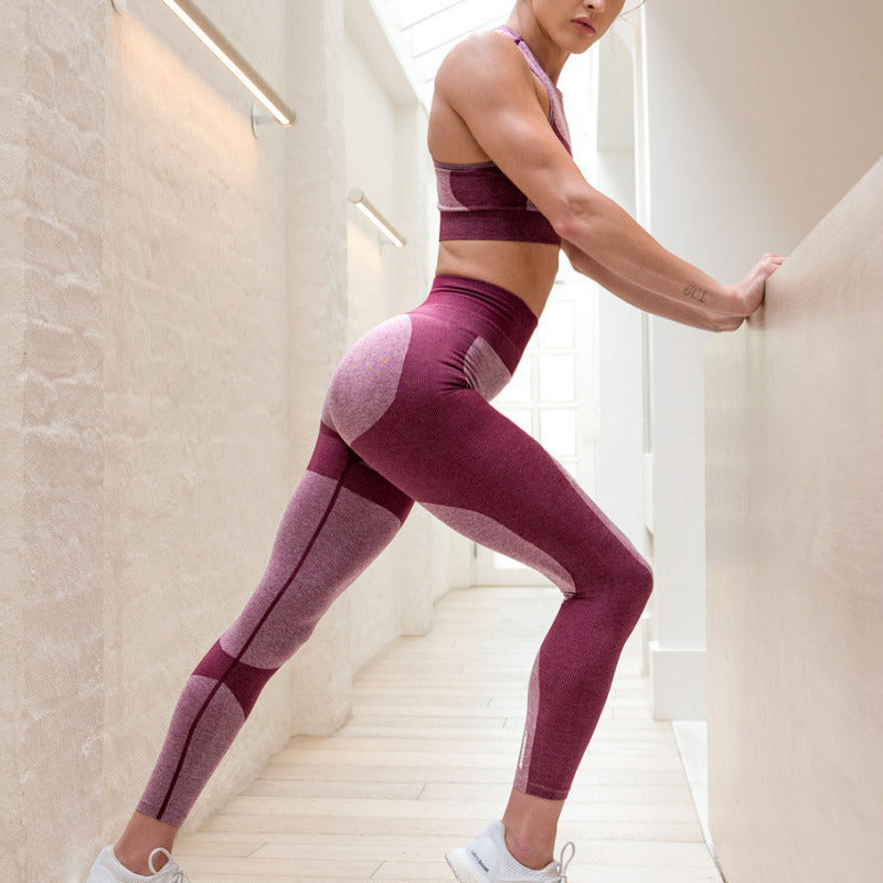 Super Stretchy Seamless Leggings