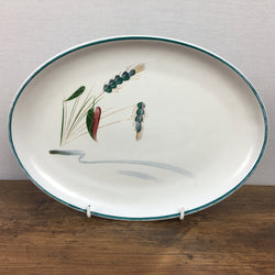 Denby Greenwheat Steak Plate / Oval Platter