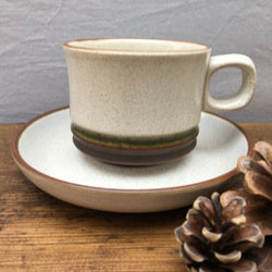 Denby Potters Wheel (Green) Tea Cup & Saucer