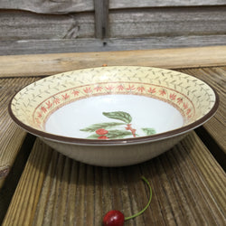 Johnson Bros Fruit Sampler Dessert Bowl
