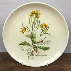 Poole Pottery Country Lane Glossy Salad Plate