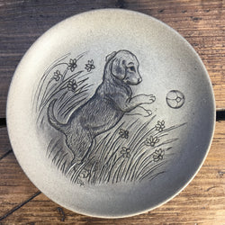 Poole Pottery Stoneware Plates - Puppy Beagle Playing with Ball