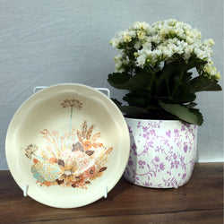 Poole Pottery Summer Glory Dessert Bowls