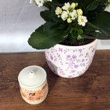 Poole Pottery Summer Glory Salt Cellar