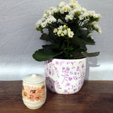 Poole Pottery Summer Glory Salt Pot