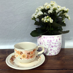 Poole Pottery Summer Glory Tea Cup