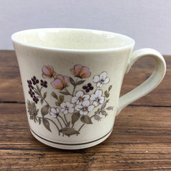 Royal Doulton Bredon Hill Tea Cup