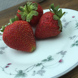 Royal Doulton Strawberry Fayre Bread & Butter Plate