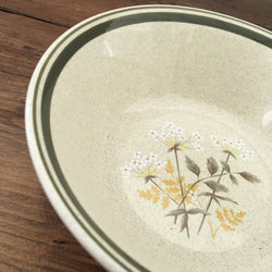 Royal Doulton Will o' the Wisp Cereal Bowl, Rimless