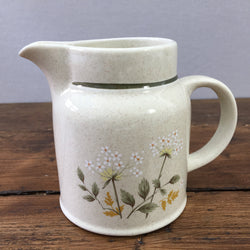 Royal Doulton Will o' the Wisp Milk Jug