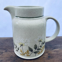 Royal Doulton Will o the Wisp Large 1.75 Pint Jug