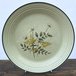 Royal Doulton Will o the Wisp Dinner Plate, Rimless