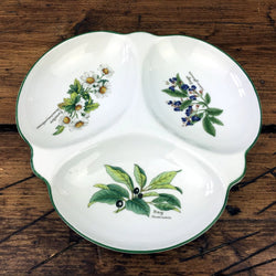 Royal Worcester Worcester Herbs Hors D'oeuvre Dish